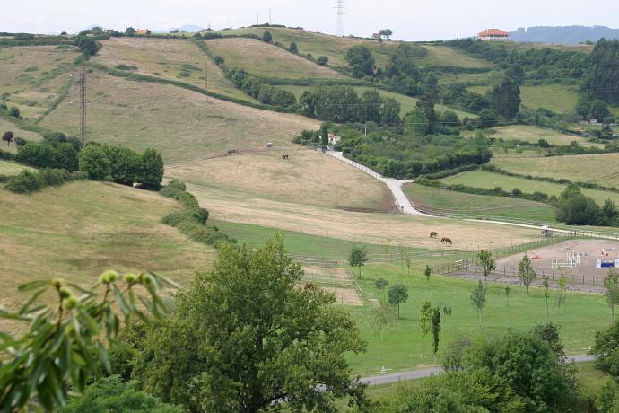 Entorno Natural Hipica Porceyo