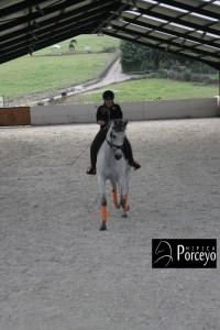 Hipica Porceyo IMG_0102