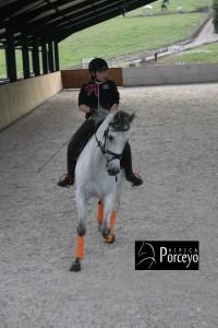Hipica Porceyo IMG_0103