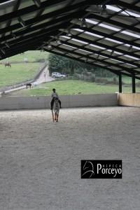 Hipica Porceyo IMG_0116